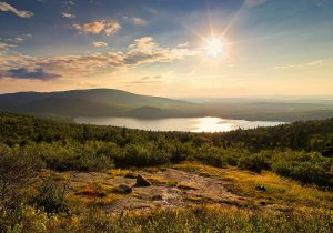 Acadia 02
